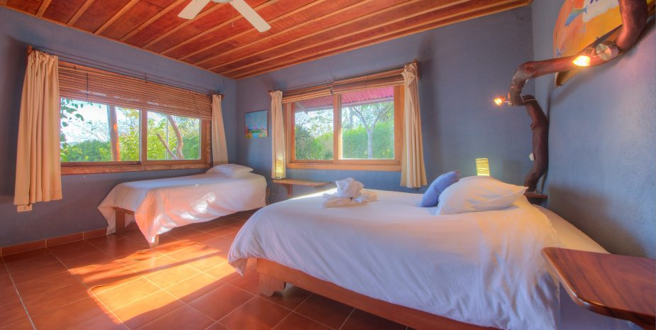 Sapo or Frog room is located in the Main Lodge and is considered a standard room. Sapo comes with one queen and one single bed